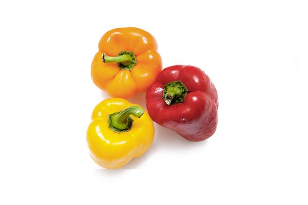 À plats Ventes - poivrons